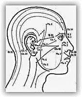 Akupunktur_Dr-Lindhammer_Berlin